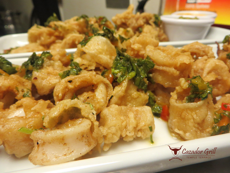 Cazador Grill Peruvian Restaurant Tampa Florida Fried Calamari